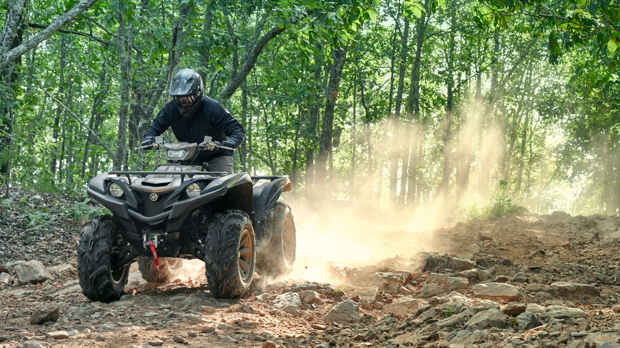 Grizzly 700 EPS SE - T3A